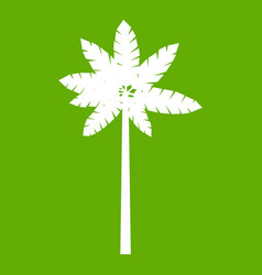 Palm woody plant icon green vector