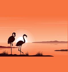 Silhouette flamingo on lake landscape vector
