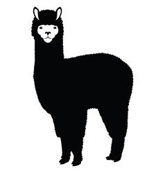 Lama silhouette vector image