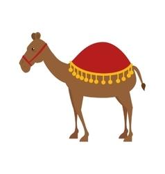 Cute camell manger character vector
