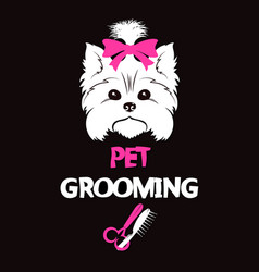 Pet grooming and washing vector
