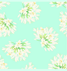 Snow white agapanthus on green mint background vector
