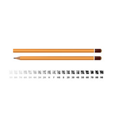 yellow wooden pencil with strokes showing the vector image