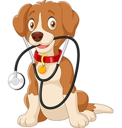 Cute dog sitting with stethoscope vector image