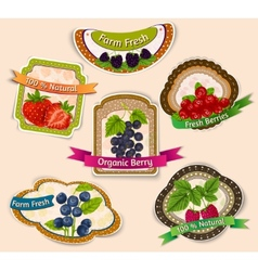 Berries emblems set vector image vector image