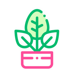 bush plant leaves in pot thin line icon vector image