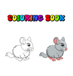 Cartoon chinchilla coloring book isolated on vector