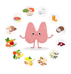 cute thyroid gland cartoon character vector image