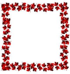 Frame from maple leaves vector