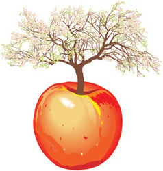 new apple tree In Spring vector image vector image