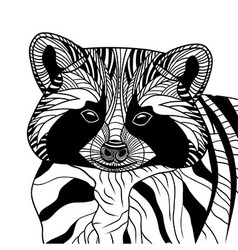 Racoon or coon head animal vector