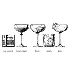 Set alcohol cocktail vector
