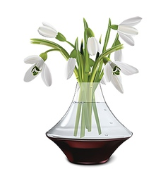Snowdrops in a vase vector
