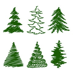 green spruces vector image