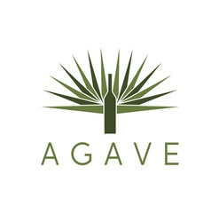 Agave and bottle design template vector