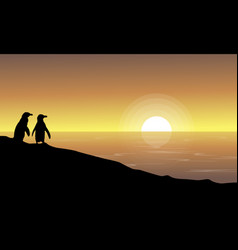 At sunset scenery with penguin silhouettes vector