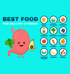 best food for strong stomachstrong vector image