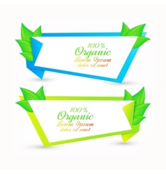 Colorful set of banners with fresh green leaves vector image