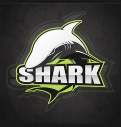 shark emblem vector image