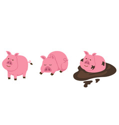 isolated pig on white background vector image