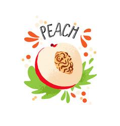 Hand draw peach orange ripe vector