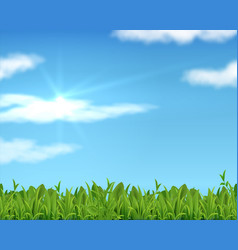 Realistic lawn and sky 3d spring grass background vector