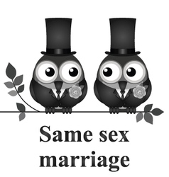 Same Sex Marriage vector