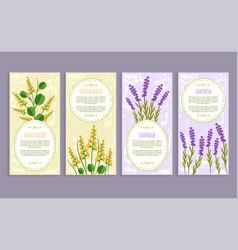 Sandalwood and lavender set vector