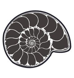 Ammonite fossil vector