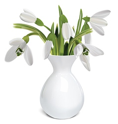 Bouquet of snowdrops in a vase vector