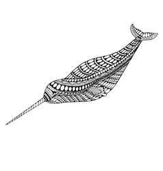 coloring page narwhal vector image