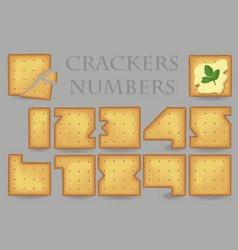 crackers numbers vector image