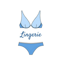 elegant lingerie icon in flat style vector image