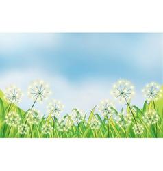 Growing weeds under the blue sky vector
