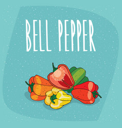 Isolated ripe capsicum fruits or bell pepper vector