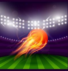 Stadium cricket night vector