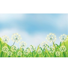 The growing weeds under the blue sky vector image