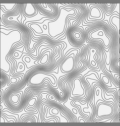 topographic map contour background vector image