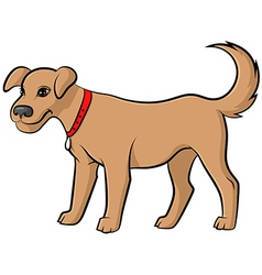 dog pale vector image