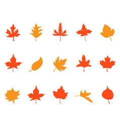 color autumn leaves patterns icons vector image vector image