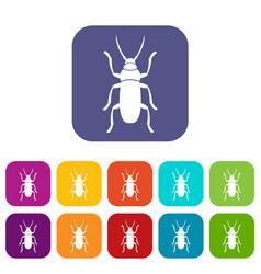 Beetle bug icons set vector