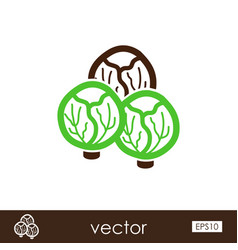 Brussels sprouts outline icon vegetable vector