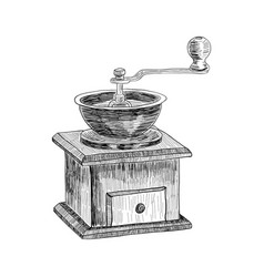 coffee grinder freehand pencil drawing isolated on vector image