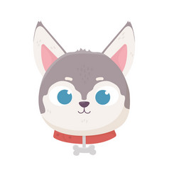 cute face dog collar with bone domestic cartoon vector image