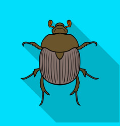 dor-beetle icon in flat style isolated on white vector image
