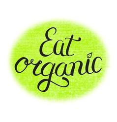 eat organic food vector image