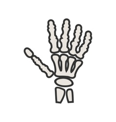 Hand skeleton vector