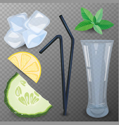 refreshing drink ingredients vector image