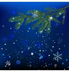 Snow branches vector image