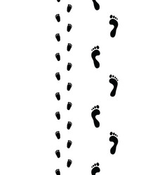 Trail feet seamless vector